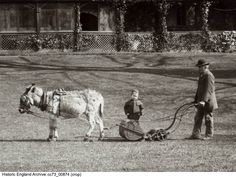CC73/00874 Cropped view of a small boy watching as a man mows the lawn with a horse-drawn lawn mower. Upton Court, Upton,  Slough   Date1883 Photographer: Henry W Taunt.  Please click for more information or to search our collections. South East England, Boys Watches, Small Boy, Historical Images, Horse Drawn, Lawn Mower, Lost, Collections, Horses