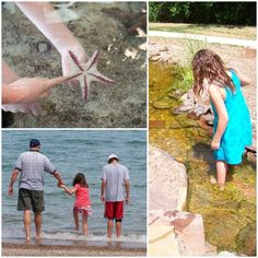 Summer Fun - Edventures with Kids