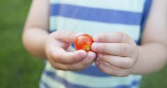 Study Finds 30,000 2-Year-Olds Have NEVER Eaten A Vegetable 2 Year Olds, Never, Healthy Eating, Study, Stuffed Peppers, Vegetables, Studio, Stuffed Pepper, Vegetable Recipes