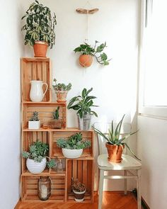 Crates in my kitchen corner. Crates as plant stands. Crate construct… Crates in my kitchen corner. Crates as plant stands. Wood Crate Diy, Wood Crates, Wood Crate Shelves, Ikea Crates, Wooden Crates With Plants, Wooden Boxes, Crate Decor, Crate Bookshelf, Wooden Sheds