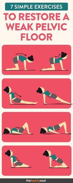 7 Simple Exercises to Restore a Weak Pelvic Floor Pelvic Floor, Workout Challenge, Easy Workouts, Challenges, Fitness Inspiration, Muscle, Exercise, Excercise, Muscles
