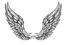 Angel wings drawing