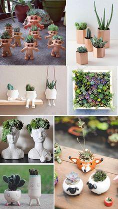 mais. Succulent Gardening, Garden Terrarium, Succulent Pots, Kitchen Gardening, House Plants Decor, Cactus Decor, Plant Decor, Succulents For Sale, Cacti And Succulents