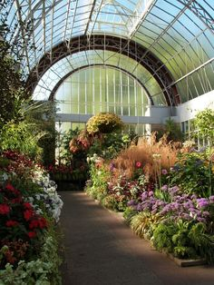 The Wintergarden in Auckland, New Zealand Perfect Place, The Good Place, Auckland, Flower Aesthetic, Flowers Nature, Winter Garden, Aesthetic Pictures, Botanical Gardens, Greenery