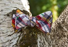 """""""Dragonfly"""" bow tie  www.sweetsouthernspud.com"""