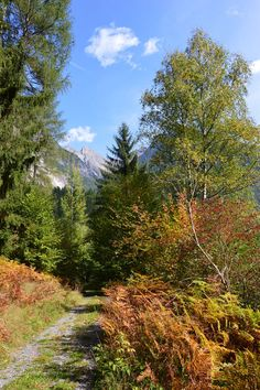 Oetztal valley - I have walked here countless times! Ah, the memories... :>