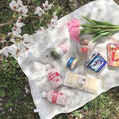oh how lovely Picnic Date, Summer Picnic, Winnie The Pooh Drawing, Aesthetic Grunge Tumblr, Japanese Snacks, Japanese Candy, Theme Background, Food Goals, Pretty Pastel