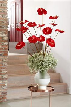 Classic way to bring Athuriums into your house ©Anthura #anthurium #TropicalImproved #red