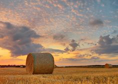 Yet another hay bale shot..