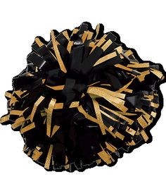 Chassé Wetlook with Holographic Flash Cheerleading Pom Poms Cheerleading Pom Poms, Cheer Pom Poms, Cheerleading Uniforms, Football Cheerleaders, Gold Pom Poms, Mein Hobby, Cheer Shoes, Pom Pon, Team Wear
