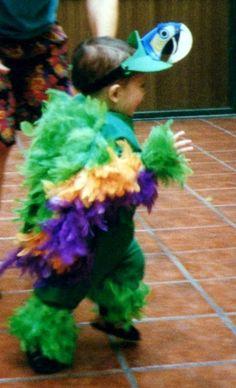 Un precioso guacamayo verde,  apenas puede caminar este nene