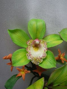 Cymbidium Orchid  (inspiration flower for my wedding) i dont think the boys liked the neon green vests, but hey, it was MY DAY! ;):