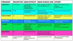 Effects of various Vasopressor drugs on receptors