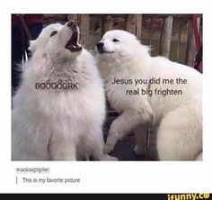 """""""Jesus you did me the real big frighten"""" This is my fave tbh XD"""