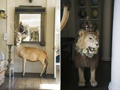 Taxidermy, A Vintage Fair and a Bell Tent Village ~ The Amazing Wedding of Hannah and Henry at Aynhoe Park...