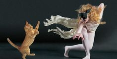 Cats taking a stab at contemporary dance with human companions » Lost At E Minor: For creative people