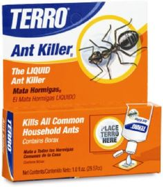 OZ LiQ Ant Killer II ** Check out this great product.(This is an Amazon affiliate link and I receive a commission for the sales)