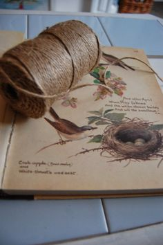 """A favorite book """"The Country Diary Of An Edwardian Lady""""  by Edith Holden.  The illustrations remind me of living in """"The Woodlands."""""""