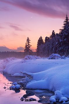Losiny Ostrov National Park, west Russia