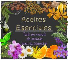 Aromaterapia, uso y cuidado de los Aceites Esenciales http://wp.me/p3EEwy-iN