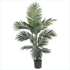 Nearly Natural 4' Kentia Palm Silk Tree in Green Faux Floral / Plant…