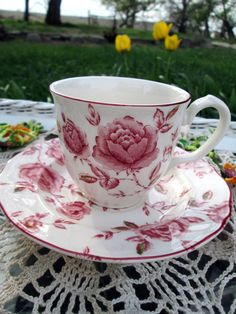 Taza de té del vintage Taza de té y platillo Shabby Rose brote Rosas Gres