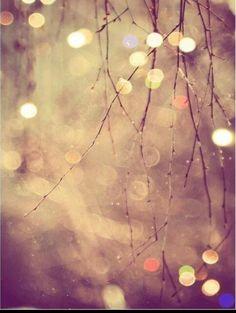 Cosa desiderate per questo Natale? Qualsiasi sia il vostro sogno non smettere di rincorrerlo!