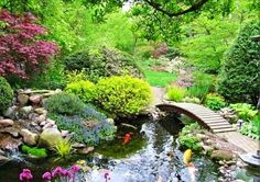Stunning japanese garden ideas plants you will love 46 Online AccessFull-text content can be found at this site through Project Muse. Designing a Japanese landscape is a huge way to produce an outdoor sanctuary in your backyard. Japanese Garden Design, Japanese Landscape, Japanese Gardens, Icon Set, Portland, Japanese Water, Private Garden, Water Garden, Garden Bridge