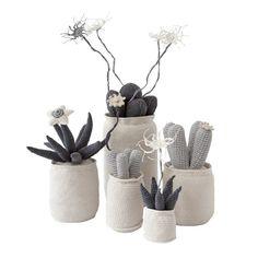 Risultati immagini per safari fusion cactus