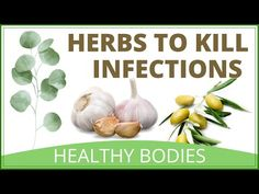 Natural Herbs To Kill Viruses And Clear Mucus from The Lungs First Health, Natural Herbs, Homemade Skin Care, Lungs, Natural Home Remedies, Everyday Food, Get Healthy, Health Benefits