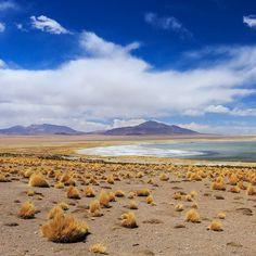 Até parece pintura mas é real. Paisagem que fotografamos no passeio para o Salar de Tara no Atacama Chile #NerdsNoAtacama #NerdsNoChile