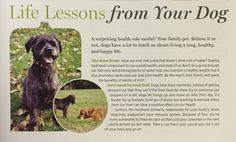 Life Lessons From Your Dog