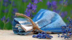 Lavendel ernten und Duftsäckchen selber machen | Frag Mutti