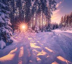 January with plenty of snow (Ringerike, Norway) by Ole Henrik Skjelstad (@ole.henrik.skjelstad) on Instagram