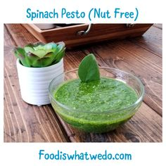 Food from around the world to your table! Pesto Pasta, Nut Free, Serving Bowls, Spinach, Pudding, Tableware, Check, Desserts, Blog