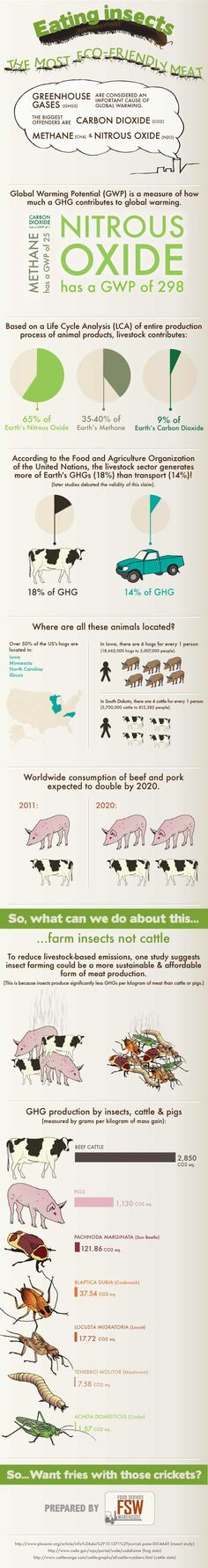 Eating insects: The most eco-friendly meat? [Infographic]