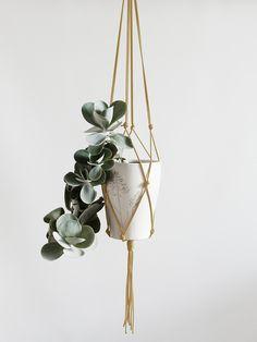 Hier biete ich eine in Handarbeit gefertigte Blumenampel. Dieses lange wundervolle Wohnaccessoires erobert die Wohnzimmer zurück. Natürlich mit modernen Materialien und in Trendfarben umgesetzt,...