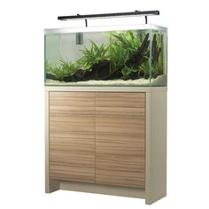 Pet Supplies Fish & Aquariums Fish Metal Tank Stand Aquarium Terrarium Welded Solid Steel Holder Corner 55 Gal Customers First