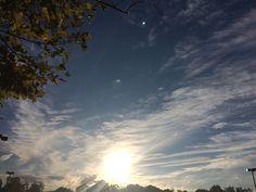 Salutations killer world divine life#coffee#adventure#travel#sailing#science#explore#hiking#sun#sky#nature#tree