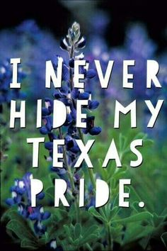 I never hide my Texas pride. Texas Texans, Texas Longhorns, Texas Quotes, Texas Humor, Texas Funny, Miss Texas, Only In Texas, Republic Of Texas, Texas Forever
