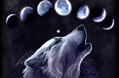 wolf art - spirit, mythical, black, wild animal black, pack, the pack, wolves, quotes, white, timber, lone wolf, canis lupus, snow, wallpaper, solitude, lobo, friendship, canine, nature, grey wolf, majestic, abstract, wisdom beautiful, arctic, grey, wolf pack, howling, wolf, wolfrunning, winter, howl, dog, wolf wallpaper