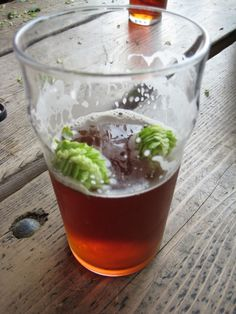The fresh hop guide for homebrewers wanting to get the most out of the 'wet' hop seasonal harvest. Plan ahead and get your fresh hops reserved before the season hits and the fresh hops are all gone. Home Brewing, Brewery, Harvest, Fresh, Cool Stuff, Tableware, Food, Dinnerware, Dishes