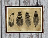 Antiqued decoration Feathers art print Old paper  vintage looking AK20