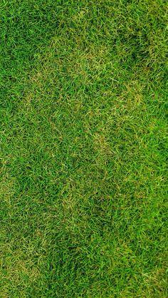 Çim çim çim Grass Texture Seamless, Wood Floor Texture, Photoshop, Art Grunge, Moldes Halloween, Architectural Shingles Roof, Grass Pattern, Elevation Drawing, Tree Plan