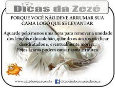 Zezé de Souza – Dicas e Soluções Práticas para sua casa