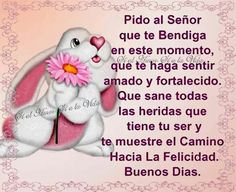 Good Morning, Happiness Quotes, Thoughts, Emoji Emoticons, Good Day Quotes, Good Morning Greetings, Festivus, Happy Day, Buen Dia