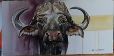 Mixed media old cape buffalo in Jejane reserve near Kruger national park south africa by Jen wingrove