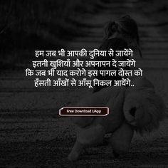 Dosti Shayari, दोस्ती शायरी हिंदी में, dosti shayari in hindi, dosti ki shayari, dosti quotes in hindi, dost ke liye shayari, beautiful dosti shayari, dost ki shayari, dosti par shayari, doston ke liye shayari, doston ki shayari, matlabi dost shayari, hindi shayari dosti ke liye Dosti Quotes In Hindi, Dosti Shayari In Hindi, Cute Love Stories, Love Story, Friendship Quotes, Sad, Beautiful, Quote Friendship