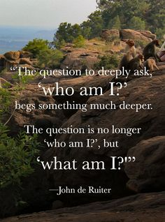 """Tiruvannamalai live - """"The question to deeply ask,  'who am I?' begs something much deeper.  The question is no longer  'who am I?', but  'what am I?'""""  - inspiring quotes by John de Ruiter"""