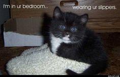 ...bedroom, wearing your slippers
